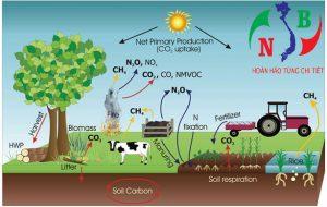 """Nông nghiệp tự nhiên và hữu cơ – Mô hình bền vững mới """"Permaculture"""""""