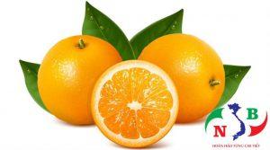 Những lợi ích của kho lạnh để bảo quản trái cây