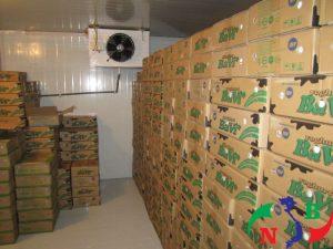 Dùng phương pháp kho lạnh để bảo quản sữa tươi