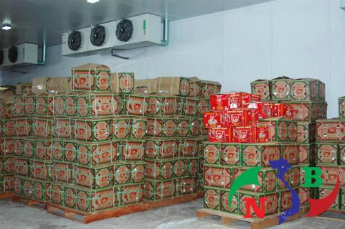 Kho lạnh bảo quản nông sản chất lượng