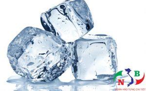 Mọi giải đáp hữu ích về kho lạnh bảo quản đá viên