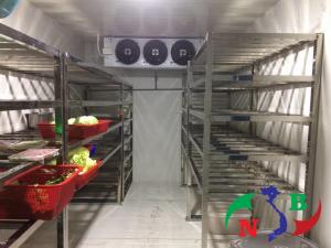 Bảo quản thực phẩm khô bằng kho lạnh đúng cách