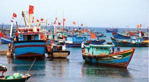 Các chính sách phát triển thủy hải sản – Cơ hội lớn cho người dân và doanh nghiệp