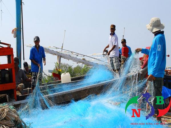Đột phá trong phát triển ngành khai thác thủy sản tại Việt Nam