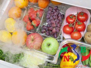 Lắp đặt kho lạnh để bảo quản và lưu trữ trái cây tươi