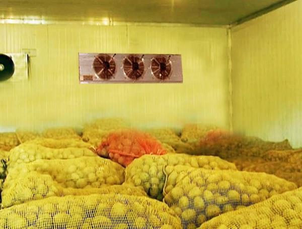 Điều kiện kho lạnh bảo quản nông sản