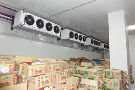 Tìm hiểu về kho lạnh bảo quản nông sản