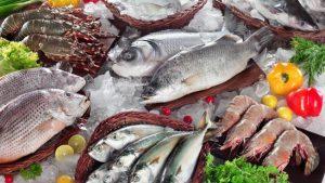 Những lưu ý khi sử dụng kho lạnh bảo quản hải sản