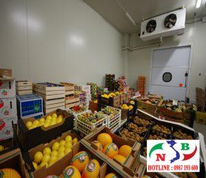 Thiết kế và lắp đặt kho lạnh công nghiệp bảo quản trái cây