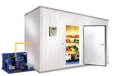 Thiết kế kho lạnh để bảo quản rau củ quả
