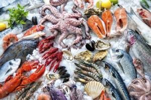 Dùng phương pháp kho lạnh để bảo quản lưu trữ hải sản