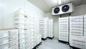 Lắp đặt kho lạnh bảo quản đông tại quận Hoàng Mai