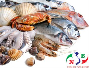 Lắp đặt kho lạnh để bảo quản hải sản tươi mát