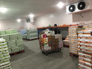 Đơn vị cung cấp kho lạnh bảo quản sữa chua tốt nhất Hà Nội