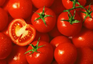 Bảo quản quả cà chua bằng phương pháp kho lạnh