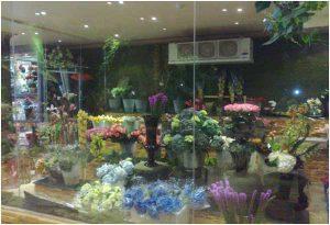Phương pháp kho lạnh để bảo quản hoa tươi