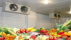 3 lưu ý khi sử dụng kho lạnh bảo quản thực phẩm
