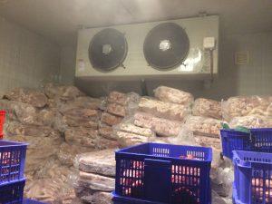 Cùng tìm hiểu rõ hơn về kho lạnh bảo quản thực phẩm