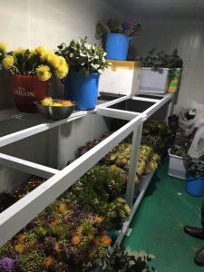 Kho lạnh bảo quản hoa quả tươi