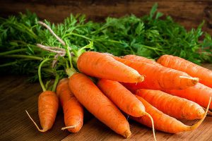 Lắp đặt kho lạnh công nghiệp bảo quản cà rốt