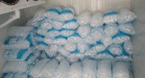 Lắp đặt kho lạnh bảo quản đá viên tại Hà Nội