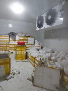 Lắp Đặt Kho Lạnh Cấp Đông Hải Sản tại Hiệp Hoà, Bắc Giang