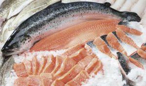 Bí quyết bảo quản cá hồi của các khách sạn 5 sao
