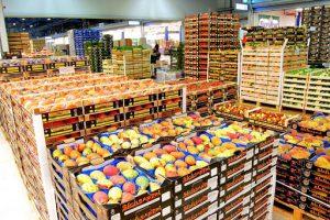Ưu điểm của kho lạnh bảo quản nông sản