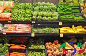 Sử dụng kho lạnh bảo quản cà rốt đúng cách như thế nào?