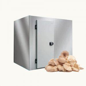 Những điều bạn cần biết về kho lạnh bảo quản nấm trước khi lắp đặt