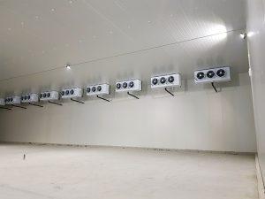 Kho lạnh công nghiệp và vấn đề tiết kiệm điện năng tiêu thụ