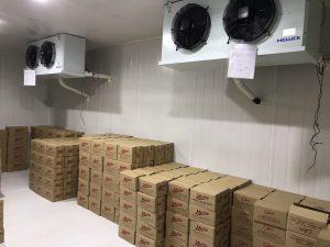 Tư vấn thiết kế hệ thống kho lạnh bảo quản kem